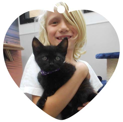 Image of girl holding cat from Oklahoma City animal shelter. PAWS for MAPS 4