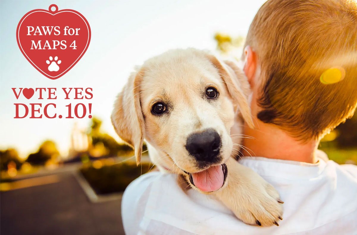 Vote Yes December 10 for a new animal shelter